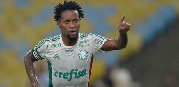 Palmeiras é o time brasileiro com mais títulos entre jogadores  veja ... 4c6db64452cff