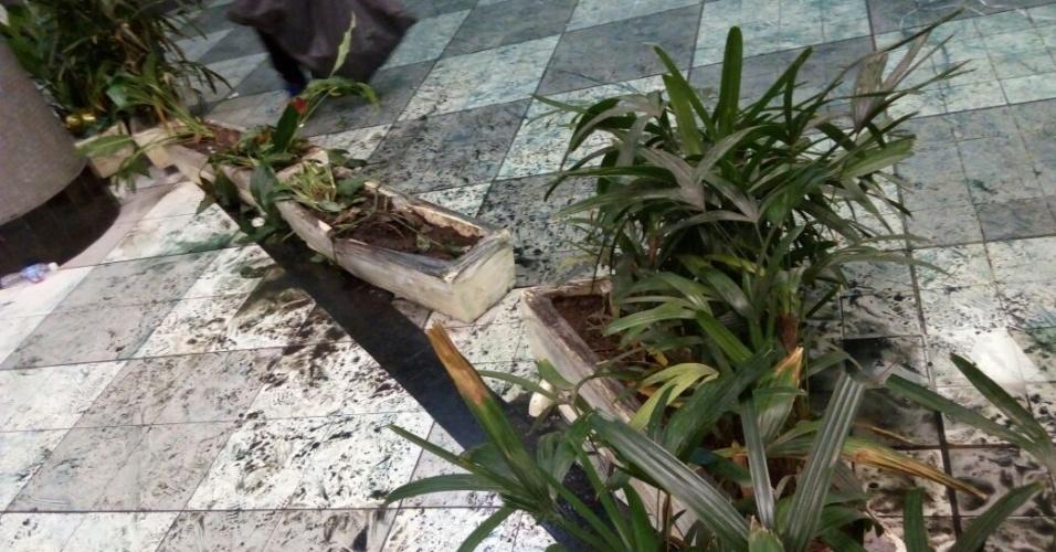 Vasos foram quebrados por torcedores do Palmeiras no aeroporto de Congonhas