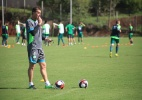Chape e Sport podem entrar em campo mais de 90 vezes em 2017; veja lista - Chapecoense/Divulgação