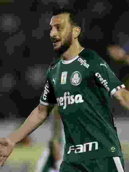 Edu Dracena pode virar até comentarista de TV - Cesar Greco/Ag. Palmeiras/Divulgação