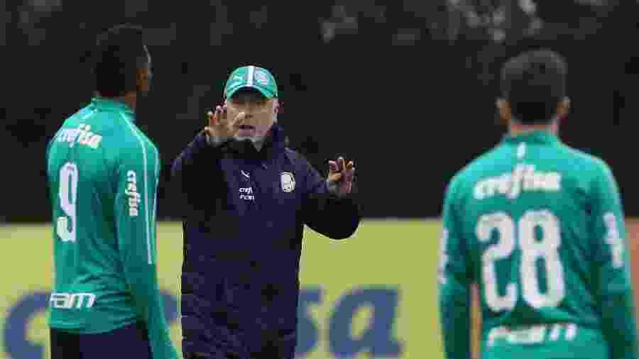 Mano Menezes dá instruções a jogadores do Palmeiras durante treino - Cesar Greco/Ag. Palmeiras/Divulgação