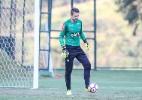 Bruno Cantini/Clube Atlético Miniro