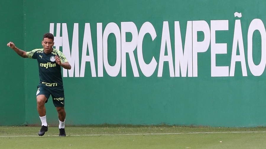 Jogadores do Palmeiras vão treinar por conta própria até segunda ordem - Cesar Greco/SE Palmeiras