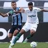 Cesar Greco/S.E.P Palmeiras