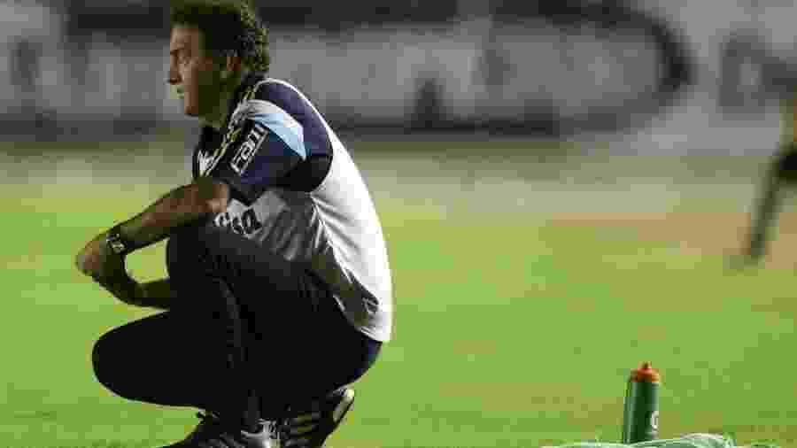 Cuca se recusou a ouvir proposta do Botafogo pela segunda vez e irritou a diretoria do clube - Cesar Greco/Fotoarena