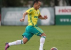 Palmeiras treina no gramado e Guerra faz primeiro trabalho com bola