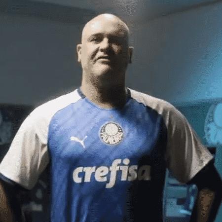 Marcos, ex-goleiro do Palmeiras - Reprodução