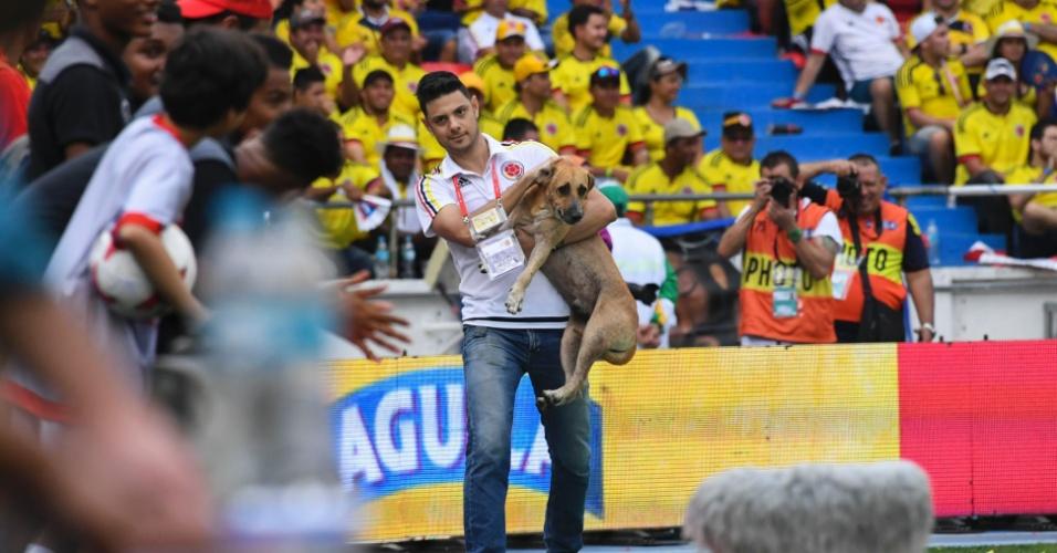 Funcionário da Colômbia tira cachorro do gramado em Colômbia e Brasil