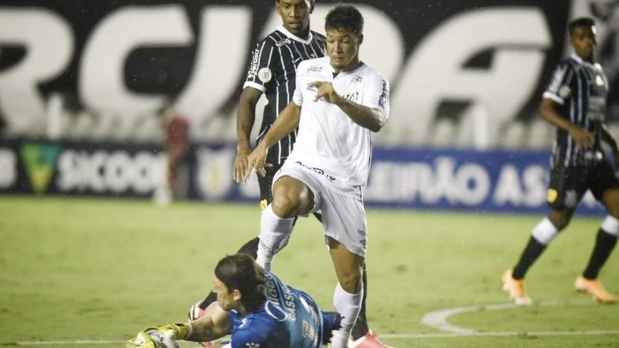 Corinthians teve menos de 40% de aproveitamento em clássicos nesta temporada  - Divulgação/Santos FC