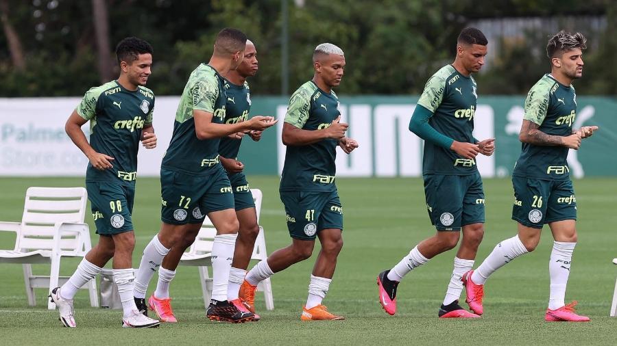 Veron faz atividades no campo em último treino do Palmeiras antes da final - Ag. Palmeiras