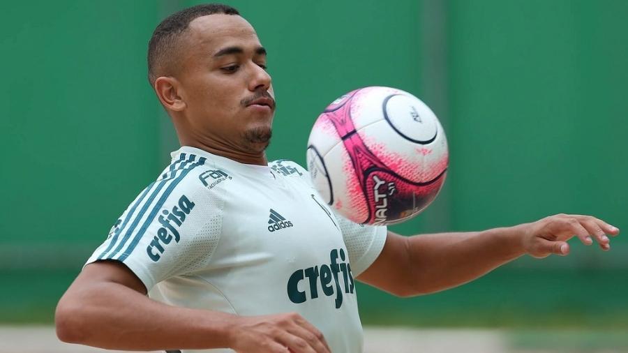 Papagaio em ação durante treino do Palmeiras; atacante foi emprestado ao Atlético-MG - Palmeiras/Divulgação