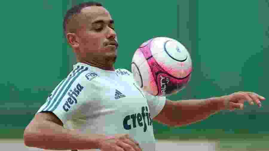 Atacante Papagaio voltou a trabalhar com o elenco principal do Palmeiras - Palmeiras/Divulgação