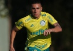 Fabio Menotti/Ag Palmeiras