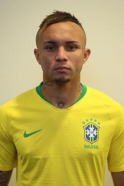 Everton, seleção brasileira