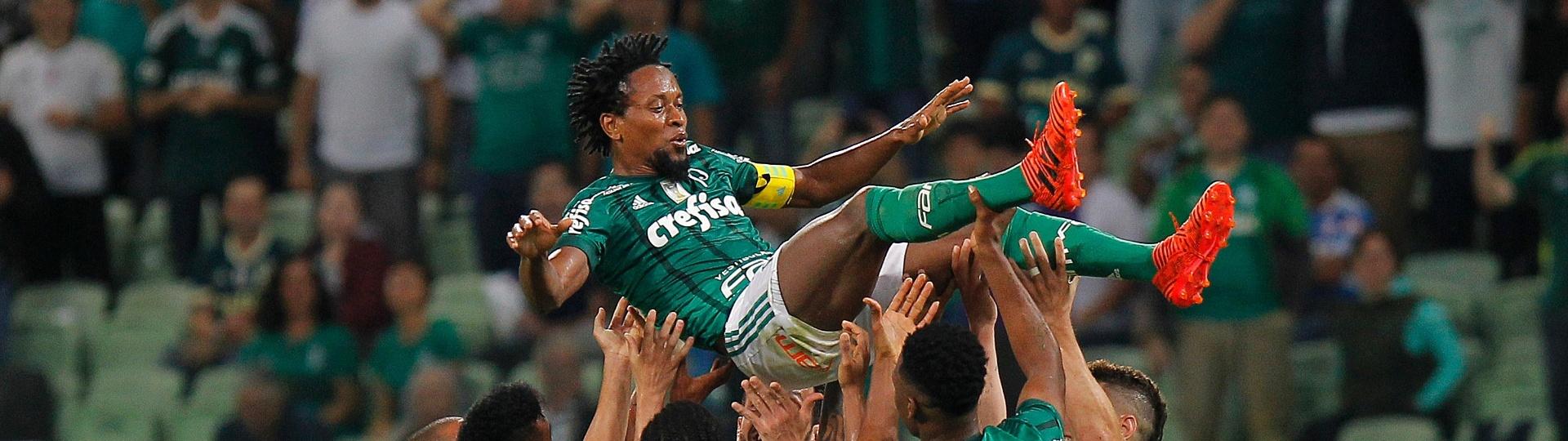 Jogadores do Palmeiras saúdam Zé Roberto após o gol de Keno sobre o Botafogo