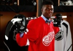 Alvo de racismo e ameaças, jogador de hóquei negro vai à partida escoltado - Kyle Kujawa/NHL