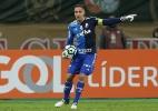 Prass não vê o Palmeiras decepcionante e põe time na briga pelo Brasileiro - Cesar Greco/Ag. Palmeiras