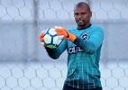 Após um turno afastado, Jefferson volta ao Botafogo, mas na reserva - Vitor Silva/SSPress/Botafogo
