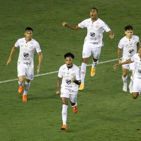 Jogadores do Santos comemoram gol de Marinho em jogo contra o Palmeiras, no Brasileirão - Fernanda Luz/AGIF