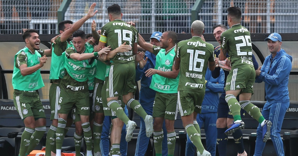 Jogadores do Palmeiras comemoram o primeiro gol de Bruno Henrique contra o  Ceará 5c51160ea862f