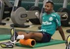 Reforço do Palmeiras mostra confiança: