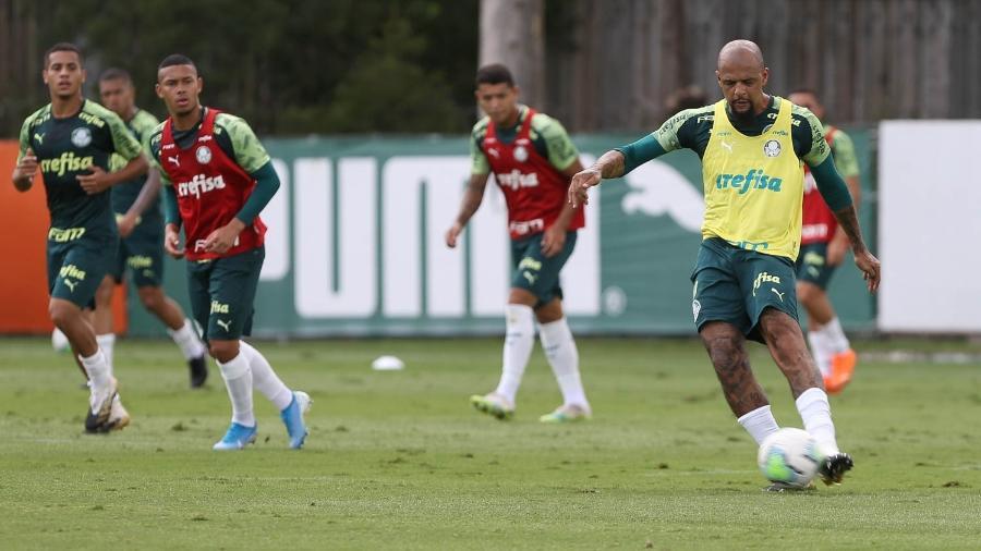 Felipe Melo, do Palmeiras, em campo durante treinamento na Academia de Futebol - Cesar Greco/Palmeiras