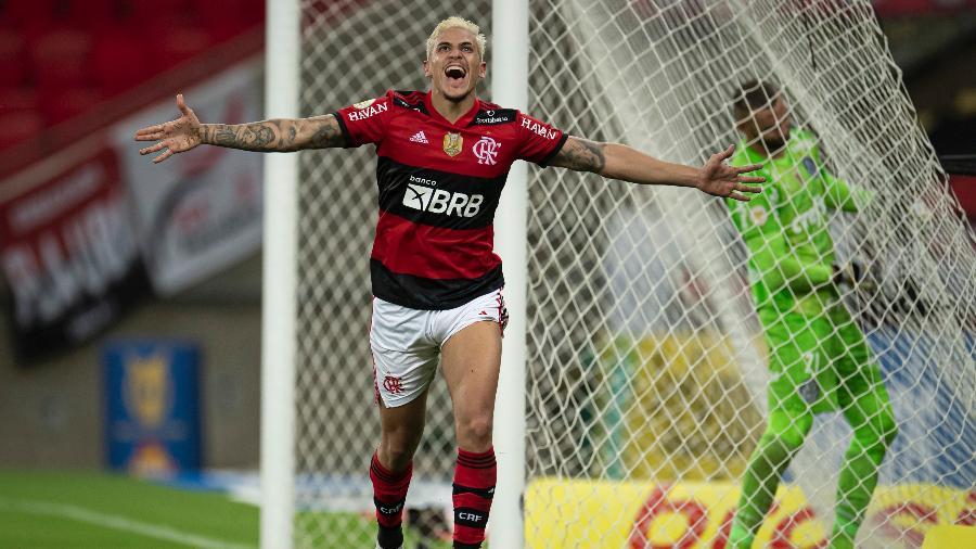 Pedro comemora após marcar pelo Flamengo em jogo contra o Palmeiras - Jorge Rodrigues/AGIF