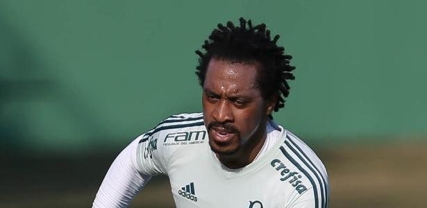 Arouca em ação pelo Palmeiras; volante não deve permanecer no clube em 2018