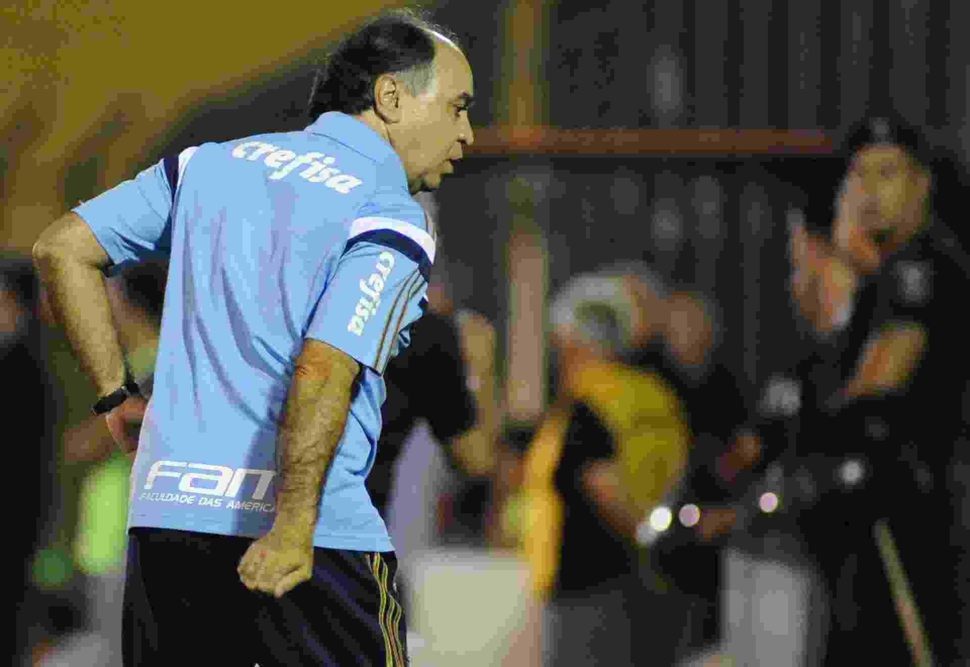 Marcelo Oliveira orienta jogadores do Palmeiras no jogo contra o River Plater-URU, na Libertadores - EFE/Gaston Britos