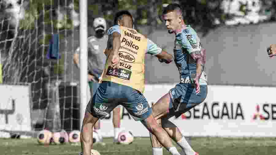 Treino do Santos no CT Rei Pelé - Reprodução/@SantosFC