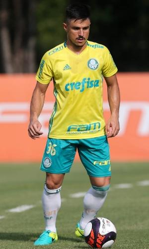 Palmeiras Willian treino