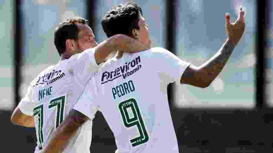 Pedro comemora gol pelo Fluminense: venda virou penhora - Úrsula Nery/ @FFERJ