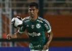 Palmeiras empresta Leandro Almeida ao Paraná até o meio de 2019