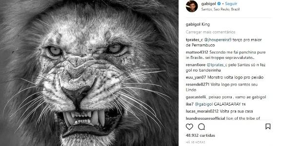 Gabigol criou polêmica ao postar foto de um leão em seu Instagram