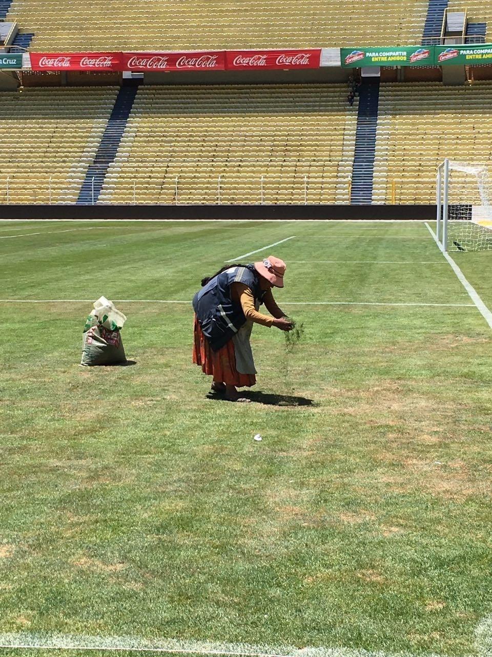 Gramado do estádio Hernando Siles, em La Paz, antes do jogo entre Bolívia e Brasil