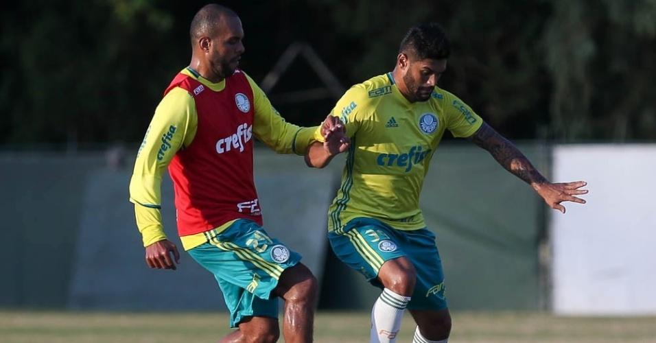 Alecsandro e Luan disputam a bola em treino do Palmeiras na Academia de Futebol