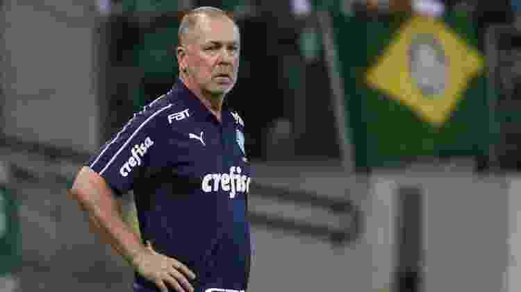 Mano Menezes chegou à marca de 15 partidas como treinador do Palmeiras - Marcello Zambrana/AGIF