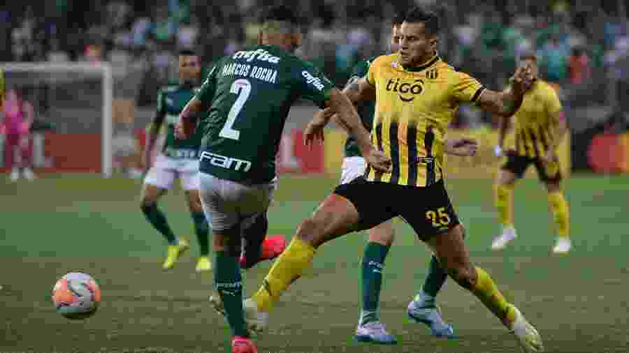 O Palmeiras fez seu último jogo pela Libertadores em março, contra o Guaraní - Bruno Ulivieri/AGIF