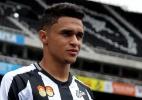 Palmeiras empresta Erik ao Botafogo até o fim de 2019