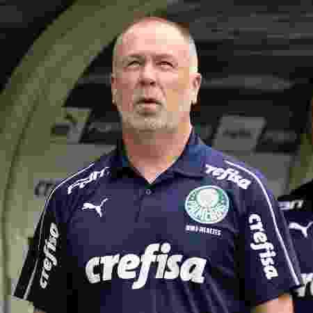 Mano Menezes em sua passagem pelo Palmeiras - Bruno Ulivieri/AGIF