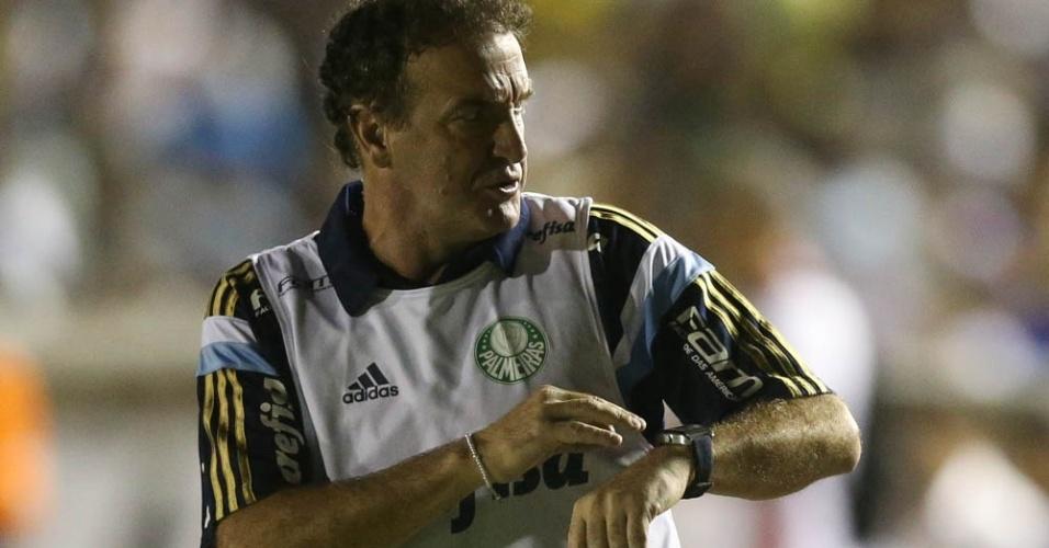 Cuca Palmeiras foto Botafogo-PB
