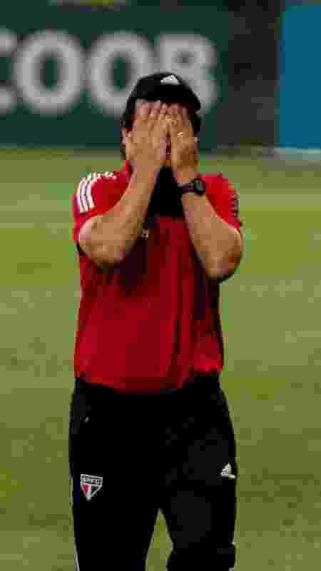 Pressionado, Fernando Diniz lamenta em jogo do São Paulo - Alessandra Torres/AGIF - Alessandra Torres/AGIF