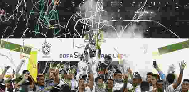 Palmeiras comemora título da Copa do Brasil - AFP PHOTO / Miguel SCHINCARIOL - AFP PHOTO / Miguel SCHINCARIOL
