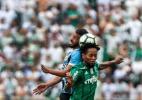 Indecisão de Zé Roberto sobre futuro trava homenagens do Palmeiras