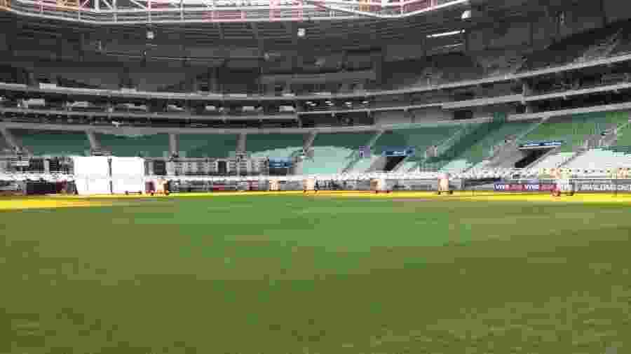 Allianz Parque receberá treino fechado do Palmeiras após replantio do gramado - Divulgação