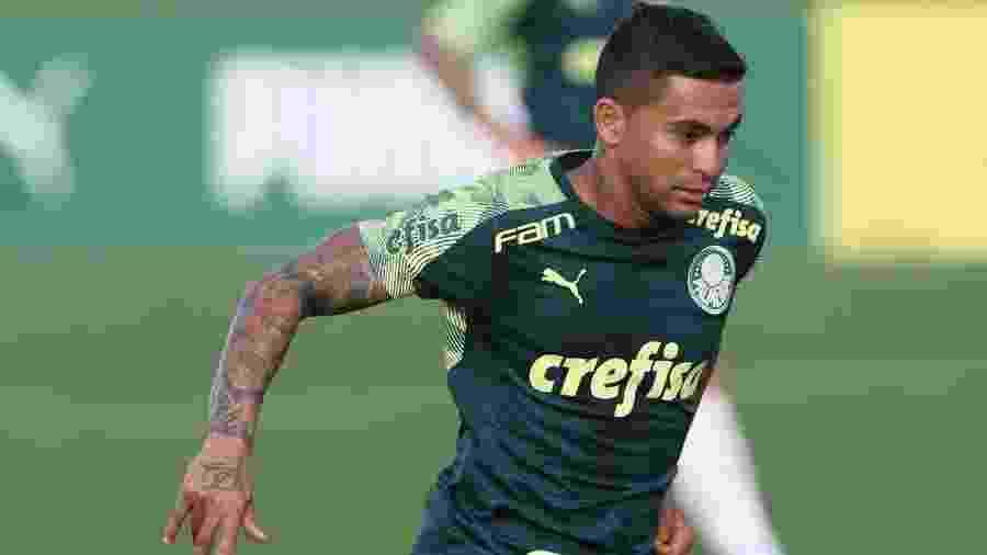 Dudu treina com o Palmeiras nos Estados Unidos - Cesar Greco/Ag. Palmeiras/Divulgação