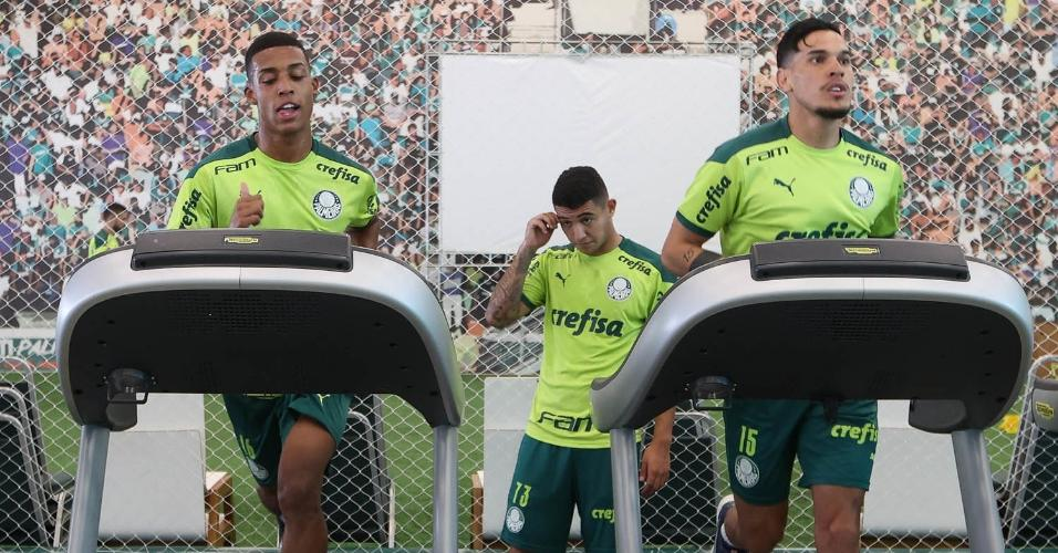 Após garantir a classificação na Libertadores, jogadores do Palmeiras já estão de volta e treinaram nesta manhã