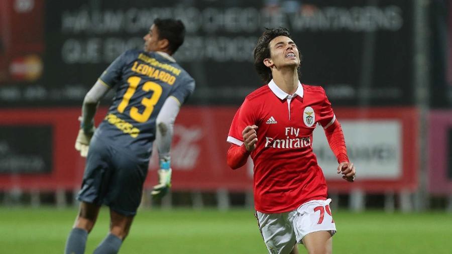 João Felix, português do Benfica - Divulgação/Benfica