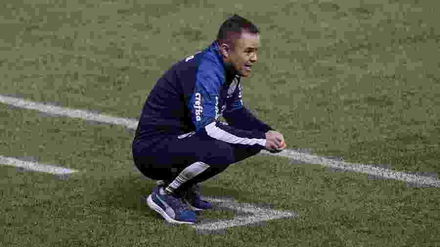 Andrey Lopes é o técnico interino do Palmeiras enquanto a diretoria não contrata um substituto para Luxa - Cesar Greco