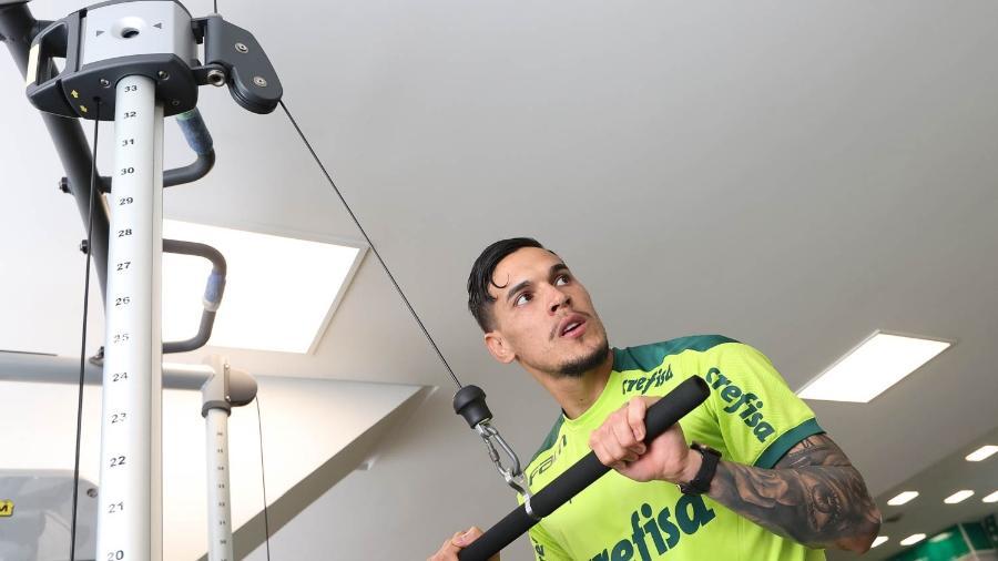 Gustavo Gómez, zagueiro do Palmeiras, faz treino interno na Academia de Futebol - Cesar Greco